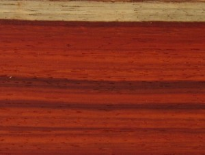 African Padauk Peppermill PD Turning Blanks